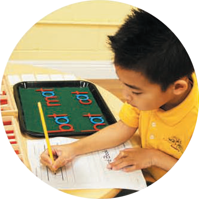 Language Arts - Advanced Primary - Preschool Palos Verdes